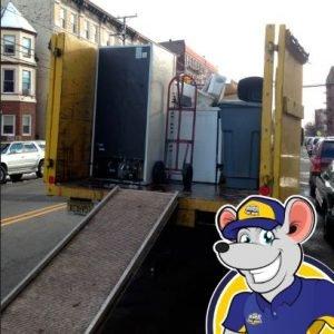junk-removal-ct-1844-junk-rats