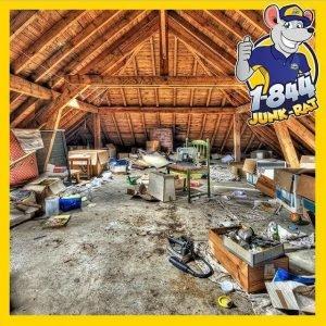 attic-cleanout-nj-1844-junk-rats