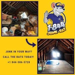 local-attic-cleanout-nj-1844-junk-rat