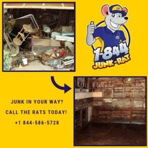 local-garage-clean-out-nj-1844-junk-rats