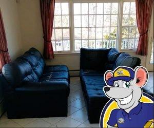 local-sofa-removal-nj-1844-junk-rat