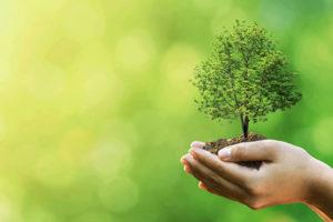 junkrats-environmentally-friendly-business